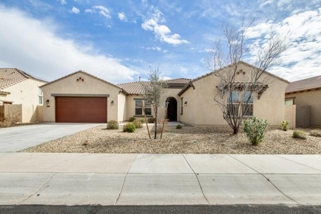 16021 W Vernon Avenue, Goodyear, AZ 85395 (MLS #5890988) :: RE/MAX Excalibur