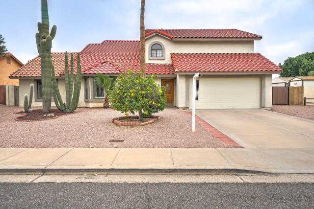 2735 E Enrose Street, Mesa, AZ 85213 (MLS #5891082) :: Yost Realty Group at RE/MAX Casa Grande
