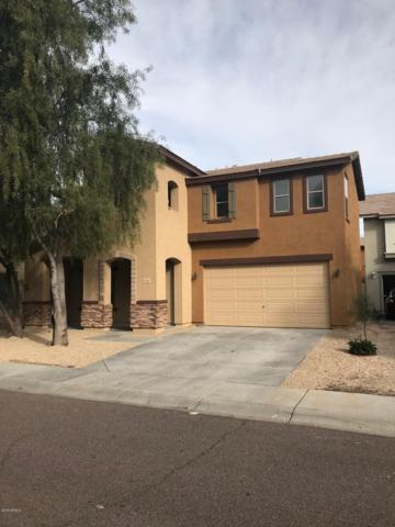 6384 W Ruth Avenue, Glendale, AZ 85302 (MLS #5891266) :: Yost Realty Group at RE/MAX Casa Grande
