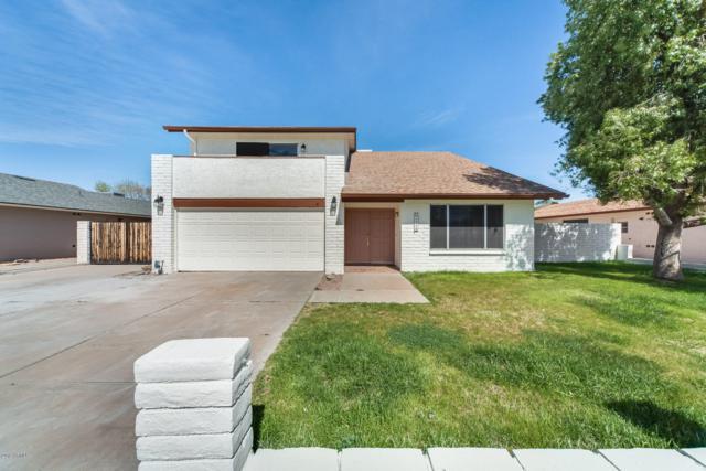 1258 W Laguna Azul Avenue, Mesa, AZ 85202 (MLS #5891321) :: Yost Realty Group at RE/MAX Casa Grande