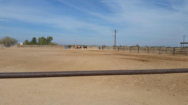 1309 S 393RD Avenue, Tonopah, AZ 85354 (MLS #5891415) :: The Garcia Group