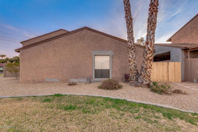 257 E Beck Lane, Phoenix, AZ 85022 (MLS #5891476) :: Yost Realty Group at RE/MAX Casa Grande