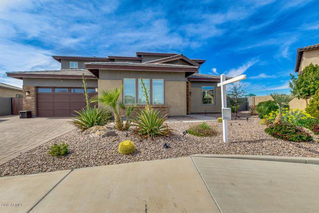 5652 S Shelby Way, Gilbert, AZ 85298 (MLS #5891525) :: Occasio Realty