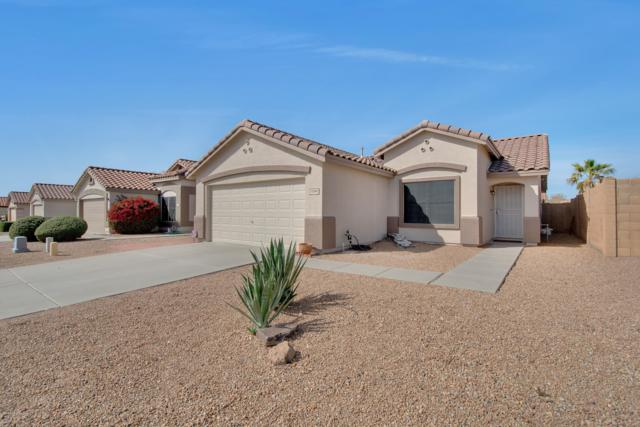11348 E Sunland Avenue, Mesa, AZ 85208 (MLS #5891533) :: Yost Realty Group at RE/MAX Casa Grande