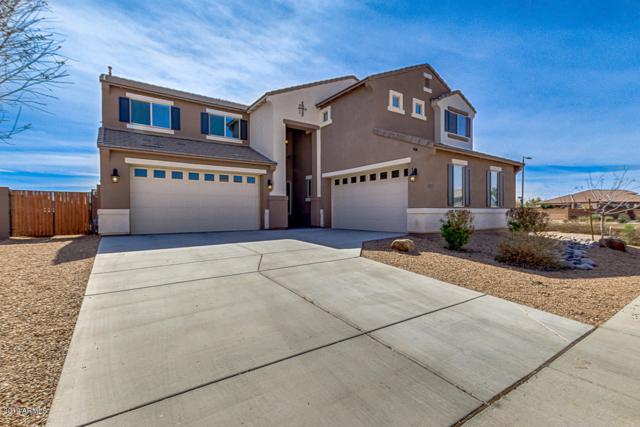 22159 E Via Del Oro, Queen Creek, AZ 85142 (MLS #5891549) :: Revelation Real Estate