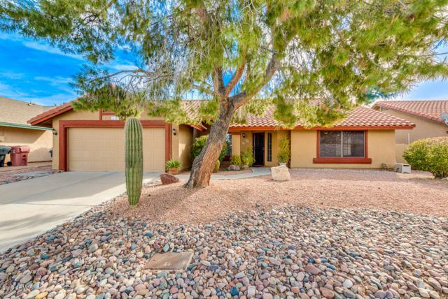 11381 N 109TH Way, Scottsdale, AZ 85259 (MLS #5891555) :: Yost Realty Group at RE/MAX Casa Grande