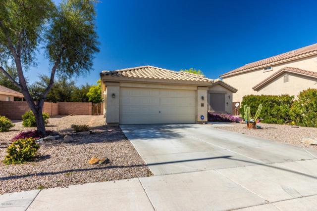 4218 N 124TH Avenue, Avondale, AZ 85392 (MLS #5891585) :: Yost Realty Group at RE/MAX Casa Grande