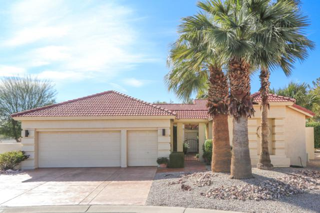 24110 S Sunbrook Drive, Sun Lakes, AZ 85248 (MLS #5891591) :: CC & Co. Real Estate Team