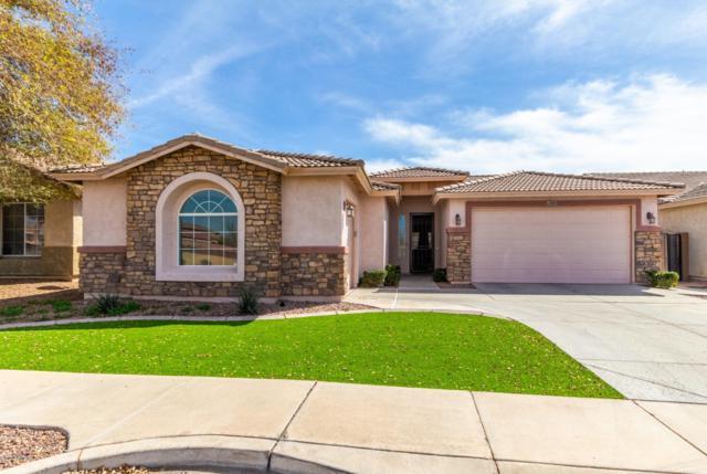 7351 W Park Street, Laveen, AZ 85339 (MLS #5891622) :: Occasio Realty