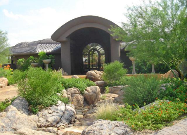 21850 N 90TH Street, Scottsdale, AZ 85255 (MLS #5891634) :: The Kenny Klaus Team