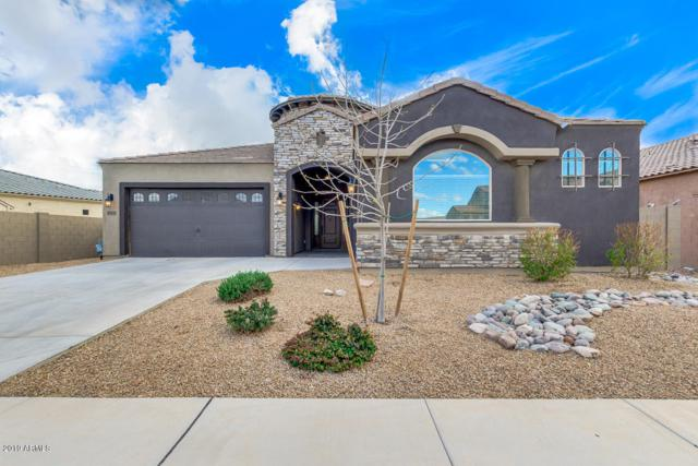22353 E Via Del Verde, Queen Creek, AZ 85142 (MLS #5891644) :: Revelation Real Estate
