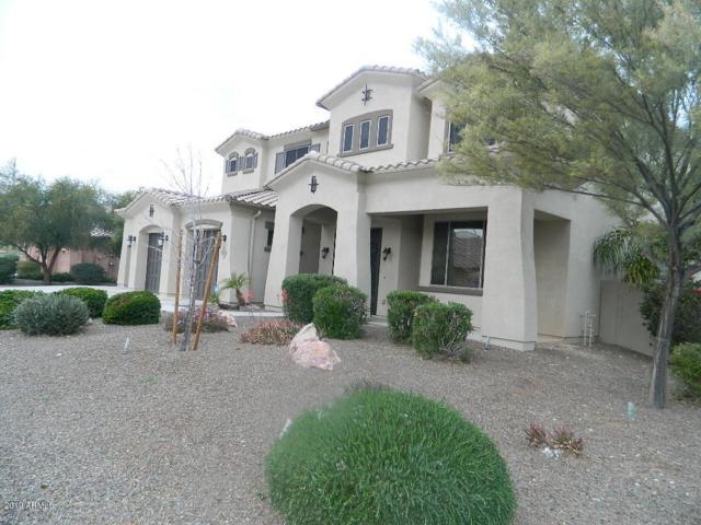 9274 W Andrea Drive, Peoria, AZ 85383 (MLS #5891787) :: The Daniel Montez Real Estate Group