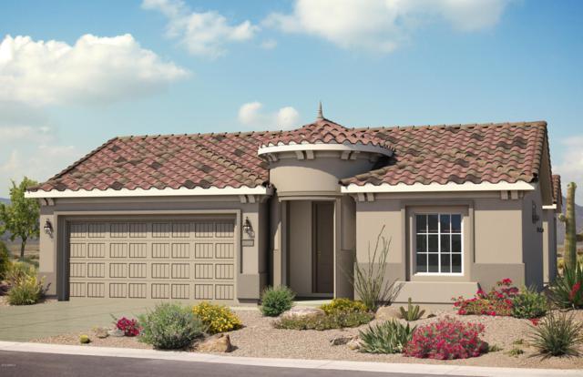 21105 N 266TH Avenue, Buckeye, AZ 85326 (MLS #5891788) :: The Results Group