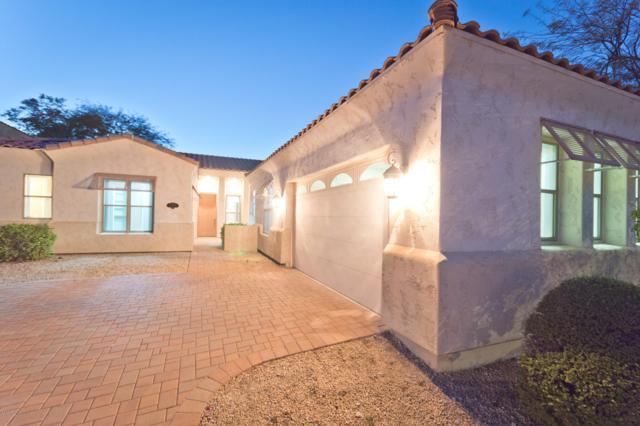 11428 N 12th Way, Phoenix, AZ 85020 (MLS #5891937) :: Yost Realty Group at RE/MAX Casa Grande