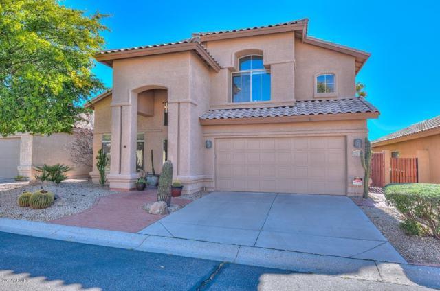 1317 E Sheena Drive, Phoenix, AZ 85022 (MLS #5891943) :: Yost Realty Group at RE/MAX Casa Grande