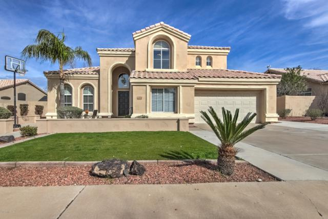 6542 E Virginia Street, Mesa, AZ 85215 (MLS #5891946) :: Yost Realty Group at RE/MAX Casa Grande