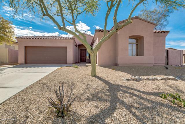 18589 W Western Star Boulevard, Goodyear, AZ 85338 (MLS #5891947) :: CC & Co. Real Estate Team