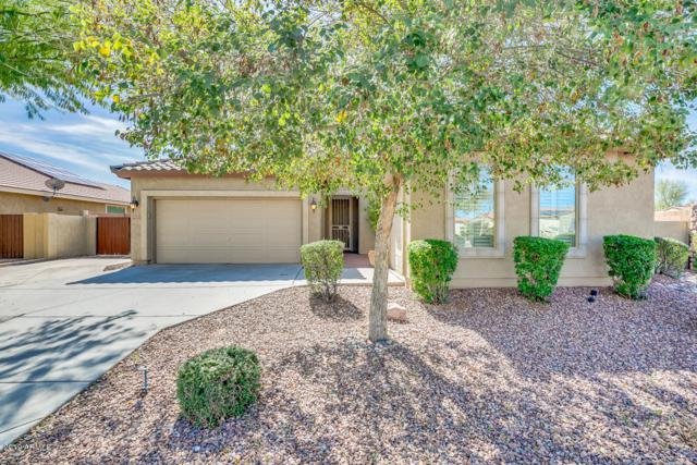 3635 E Bartlett Way, Chandler, AZ 85249 (MLS #5891985) :: Occasio Realty