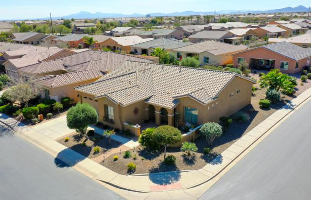 19834 N Heron Court, Maricopa, AZ 85138 (MLS #5891988) :: Yost Realty Group at RE/MAX Casa Grande