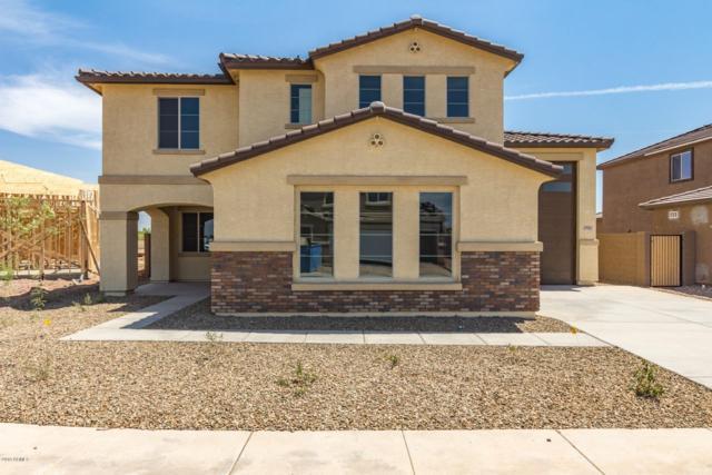 7911 W Atlantis Way, Phoenix, AZ 85043 (MLS #5892006) :: CC & Co. Real Estate Team