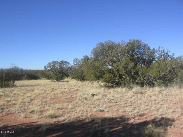 Lot 341 Chevelon Canyon Ranch, Overgaard, AZ 85933 (MLS #5892052) :: Phoenix Property Group