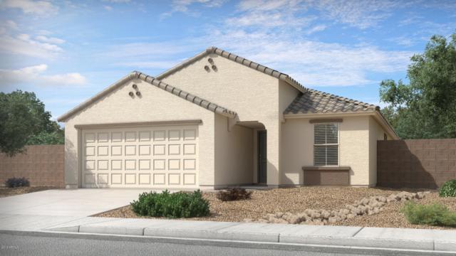 94 4th Avenue W, Buckeye, AZ 85326 (MLS #5892142) :: Occasio Realty