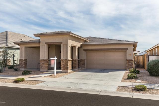 22449 E Via Del Verde, Queen Creek, AZ 85142 (MLS #5892160) :: Yost Realty Group at RE/MAX Casa Grande