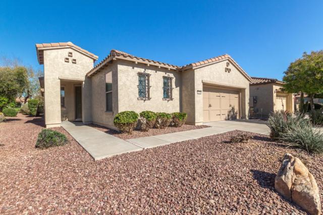 12376 W Roberta Lane, Peoria, AZ 85383 (MLS #5892174) :: Keller Williams Realty Phoenix