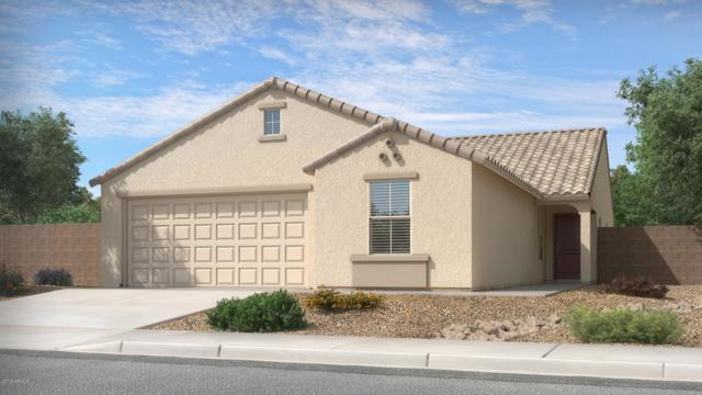 93 5th Avenue W, Buckeye, AZ 85326 (MLS #5892236) :: Occasio Realty