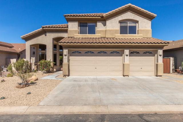 7406 E Nora Street, Mesa, AZ 85207 (MLS #5892387) :: Yost Realty Group at RE/MAX Casa Grande