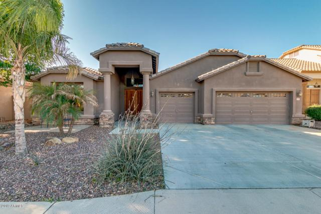 797 E Cedar Drive, Chandler, AZ 85249 (MLS #5892388) :: Lux Home Group at  Keller Williams Realty Phoenix