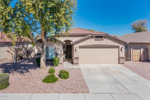 16202 W Banff Lane, Surprise, AZ 85379 (MLS #5892433) :: Lucido Agency