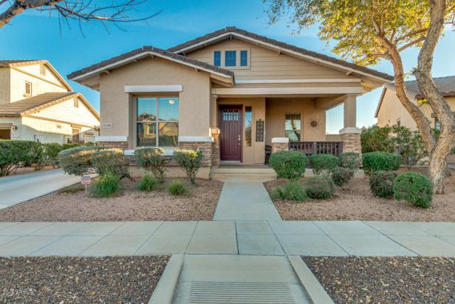15481 W Corrine Drive, Surprise, AZ 85379 (MLS #5892464) :: Santizo Realty Group