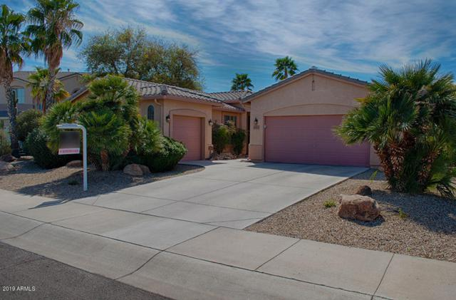 14431 W Roanoke Avenue, Goodyear, AZ 85395 (MLS #5892498) :: Yost Realty Group at RE/MAX Casa Grande