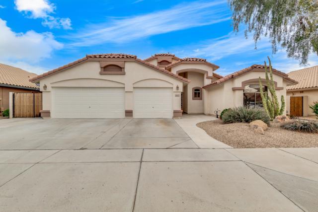 16562 W Adams Street, Goodyear, AZ 85338 (MLS #5892516) :: Riddle Realty
