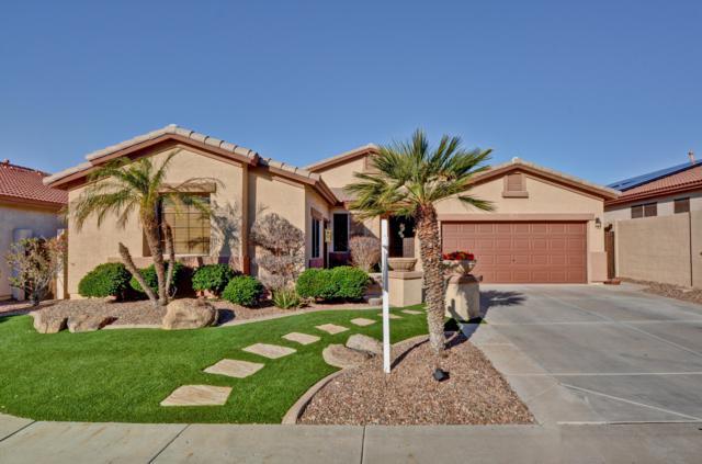 27826 N 60TH Lane, Phoenix, AZ 85083 (MLS #5892547) :: Yost Realty Group at RE/MAX Casa Grande