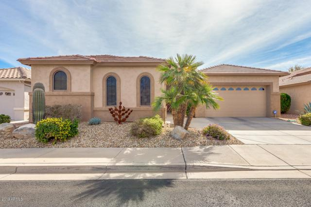 17437 N Goldwater Drive, Surprise, AZ 85374 (MLS #5892580) :: Yost Realty Group at RE/MAX Casa Grande