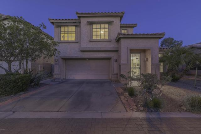 6271 S Nash Way, Chandler, AZ 85249 (MLS #5892600) :: RE/MAX Excalibur