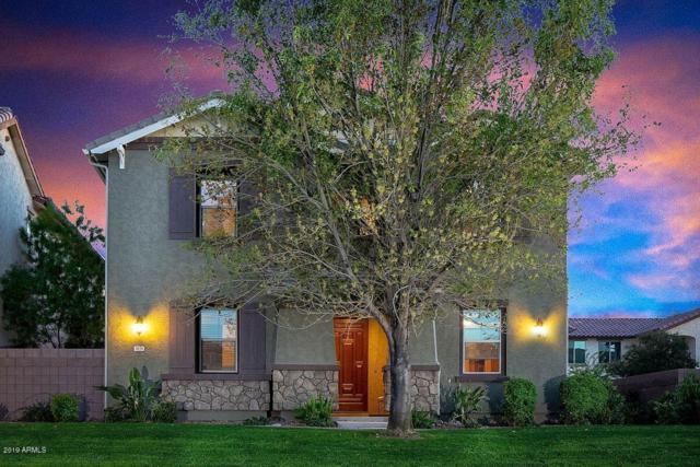 3676 E Gideon Way, Gilbert, AZ 85296 (MLS #5892641) :: Team Wilson Real Estate
