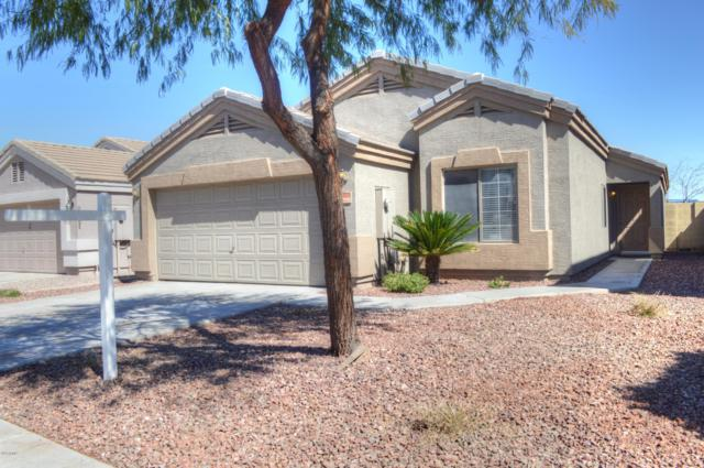 14015 N 130TH Avenue, El Mirage, AZ 85335 (MLS #5892698) :: Yost Realty Group at RE/MAX Casa Grande