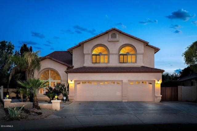 1003 E Gail Drive, Gilbert, AZ 85296 (MLS #5892805) :: Yost Realty Group at RE/MAX Casa Grande