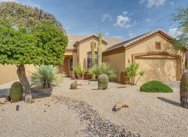 14417 N Buckthorn Court, Fountain Hills, AZ 85268 (MLS #5892818) :: Yost Realty Group at RE/MAX Casa Grande