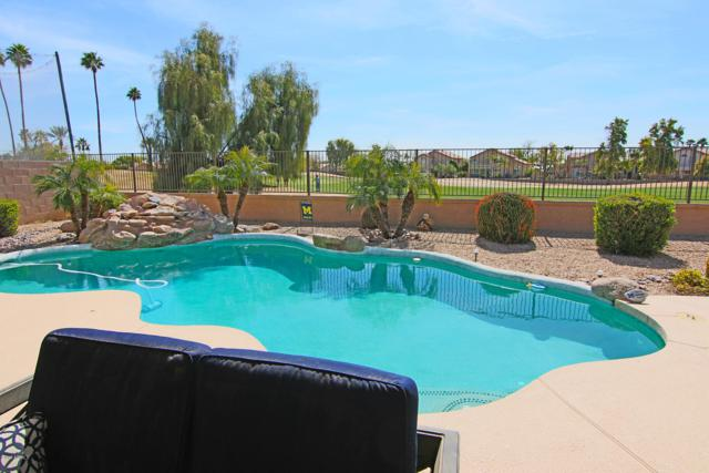 6337 W Irma Lane, Glendale, AZ 85308 (MLS #5892851) :: The Laughton Team