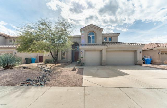 4709 E Via Montoya Drive, Phoenix, AZ 85050 (MLS #5892867) :: RE/MAX Excalibur