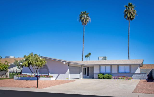 12005 N 49TH Drive, Glendale, AZ 85304 (MLS #5892868) :: The Carin Nguyen Team