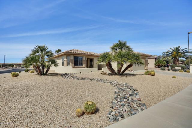15358 W Skyview Way, Surprise, AZ 85374 (MLS #5892900) :: Scott Gaertner Group