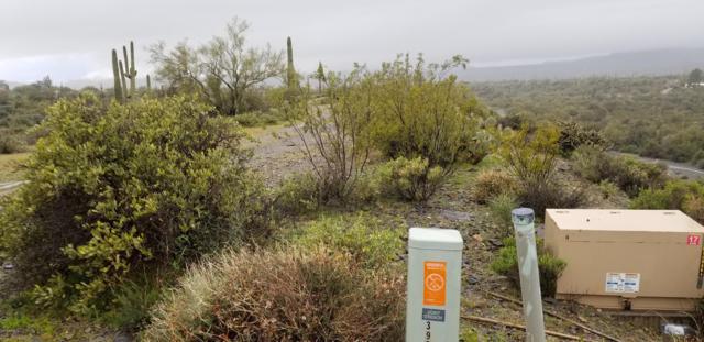 39900 N 80th Street, Cave Creek, AZ 85331 (#5892951) :: AZ Power Team | RE/MAX Results