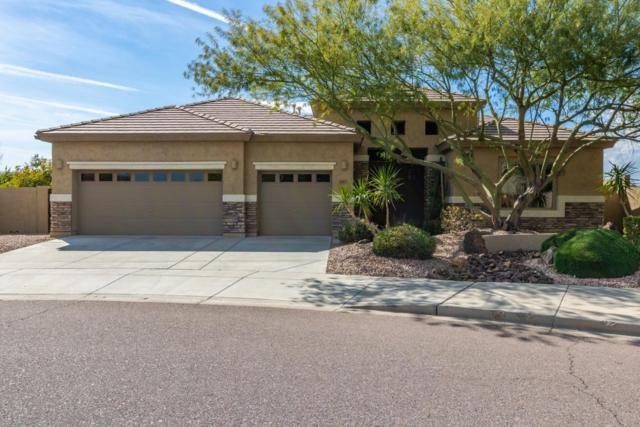 33302 N 23rd Drive, Phoenix, AZ 85085 (MLS #5892964) :: Yost Realty Group at RE/MAX Casa Grande