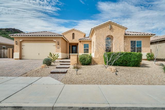 27586 N 99TH Drive, Peoria, AZ 85383 (MLS #5893011) :: The Laughton Team