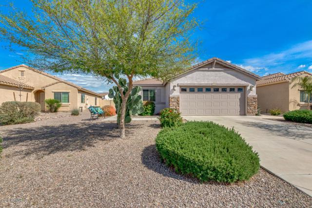 36329 N Mirandesa Drive, San Tan Valley, AZ 85143 (MLS #5893020) :: Yost Realty Group at RE/MAX Casa Grande